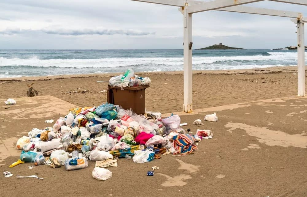 ocean mess plastic free