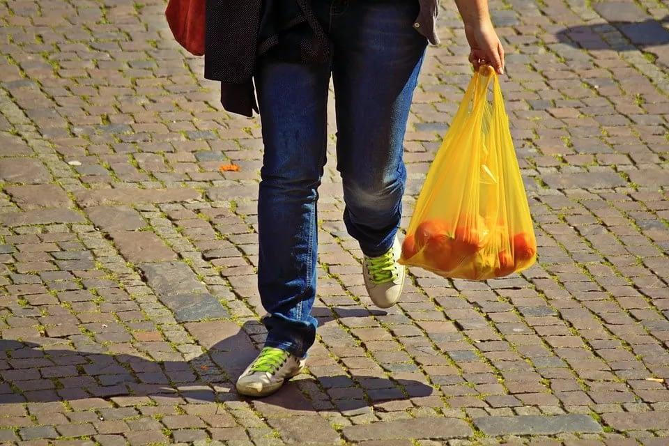 ecofworld - ban plastic bag