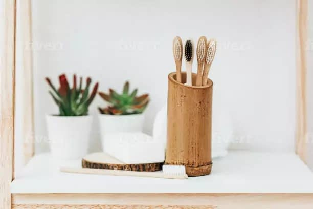Pros and Cons of Different Toothbrushes, a Bamboo toothbrush Article