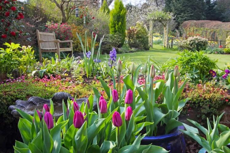 eco friendly tips in Spring season